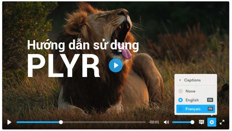 Hướng dẫn sử dụng Plyr phát Audio, Video